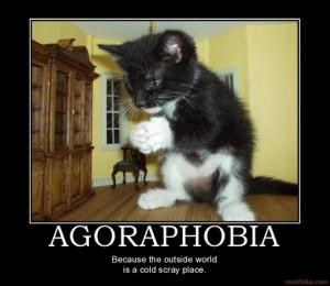 agoraphobia_agoraphobia_demotivational_poster_1226323682 ...