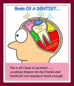 Brain of a dentist… #Dentist #Dental Jokes #Hygienist #miamidentist ...