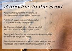 Cat Heaven Prayer | Featured Item: Pawprints in the Sand More