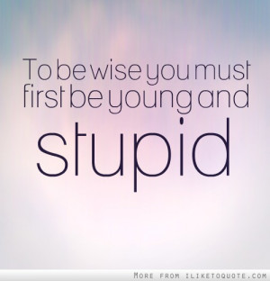 To be wise you must first be young and stupid.