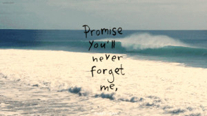 Promise Youll Never Forget Me
