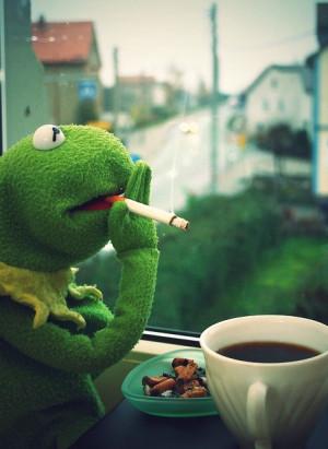 Kermit the Frog / Funny, Smoking