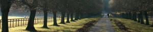 File Name : path.jpg Resolution : 940 x 190 pixel Image Type : jpeg ...