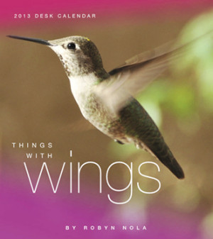 Things With Wings: Hummingbird, Dragonfly and Butterfly Calendar for ...