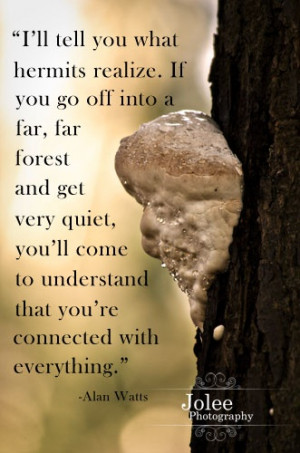 Huge Tree Fungus, Alan Watts Quote