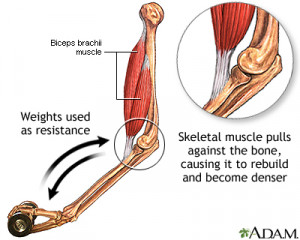 ... bones cause the bones to retain and possibly gain calcium and strength