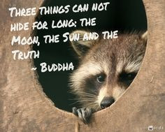 ... can not hide for long: the moon, the sun and the truth - Buddha #quote