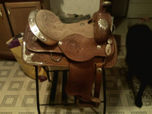 Discuss are buffalo saddles worth it? at the Tack & Equipment forum ...