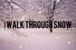 snow blizzard