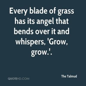 The Talmud - Every blade of grass has its angel that bends over it and ...