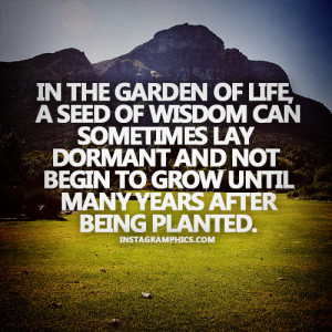 In The Garden Of Life Quote Graphic