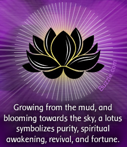 What does a Lotus Flower Tattoo Symbolize?
