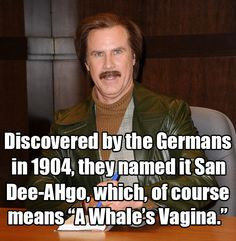 ... Ron Burgundy, 2004 | 13 Will Ferrell One-Liners We All Know And Love