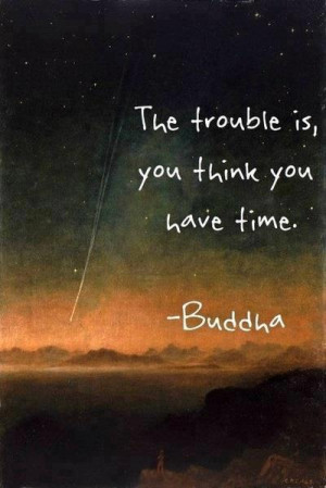 ... comment: Someone will say 'Buddha didn't say that' , I dont care