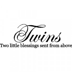 saying about twins