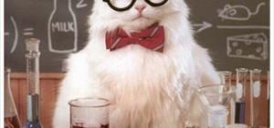 Chemistry cat 9
