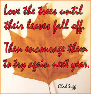 Funny Fall Love Quote Quotes...