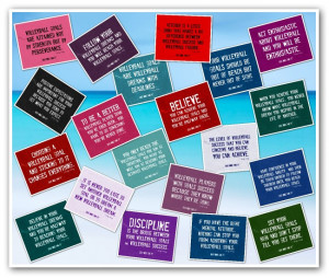 Volleyball Quotes on Posters