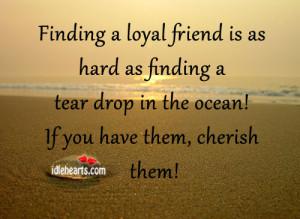 Finding a loyal friend is as hard as finding a tear drop in the ocean ...