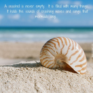 seashell is never empty. It is filled with many things - Beach ...