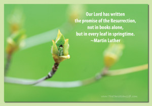 The Promise of the Resurrection