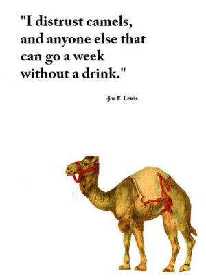 joe e lewis quote vintage camel art illustration drinking quotes ...