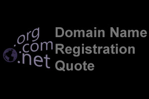 Domain Name Registration Quote