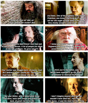 harry potter - book quotes about james and lily