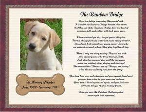 Pet Supplies > Pet Memorials & Urns