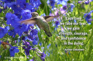 in: bird quotes , bird quotes and sayings , early bird quotes sayings