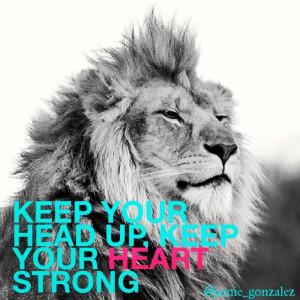 Lion Love Quotes #lion #quote #heart #love #
