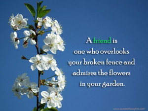 friendship-quotes-thoughts-true-friend-fence-admires-flowers-garden ...