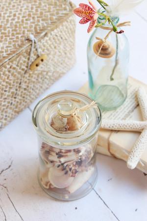 Bottled seashells