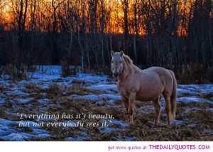 ... -photo/horse-quotes-sayings-poems-thoughts-on-horses-photography.html