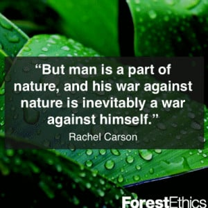 Rachel Carson Quote ~