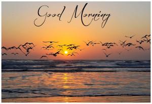 Good Morning Nature Wishes, Stylish Morning Cards