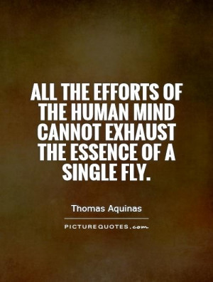 ... human mind cannot exhaust the essence of a single fly Picture Quote #1