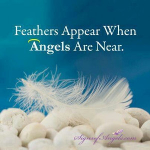 Feathers Appear When Angels Are Near.