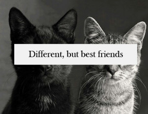 white quotes about friends black and white quotes about friends black ...