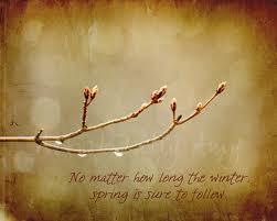 Spring quote, spring quotes, quotes about spring