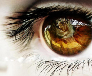 ... can our eyes take today i realised that eyes are the greatest gifts of