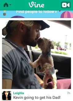 seth rollins and kevin more seth rollins tyl but post doggie kisses ...
