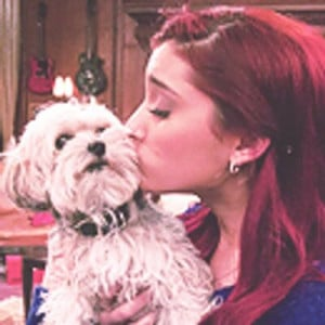 cat valentine quotes quotecat tweets 394 following 73 followers 102 ...