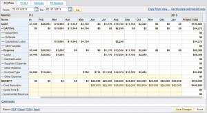 Financial Audit Cost