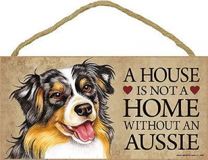 Australian Shepherd Dog Lover Collection: Australian Shepherd Dogs ...