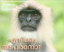 Famous Malayalam Film Dialogues