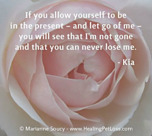 Pet Loss Quote Gallery #pet #loss #grief