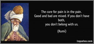 The cure for pain is in the pain. Good and bad are mixed. If you don't ...