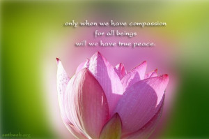 Only when we have compassion for all beings will we have true peace.