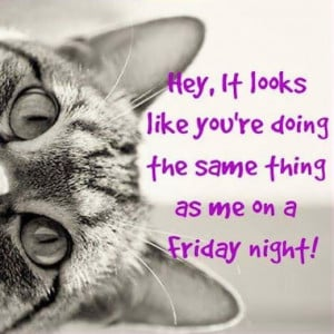 Funny Quotes About Friday Night
